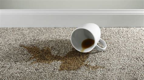 how to get coffee out of carpet how to get coffee stains out of car carpet best accessories home 2017
