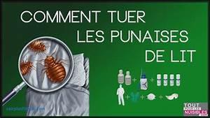 Produit Contre Les Punaises De Lit : punaise de lit traitement ~ Dailycaller-alerts.com Idées de Décoration