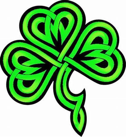 Shamrock Celtic Clipart Kleeblatt Knot Cliparts Gratis