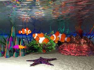 Clown Fish Wallpaper Widescreen #10735 Wallpaper ...