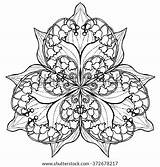 Lily Mandala Coloring Flower Valley Outlines Posy Adults Vector Pages Outline Background Adult Shutterstock Posies Flowers Bouquet Tattoo Isolated Vectors sketch template
