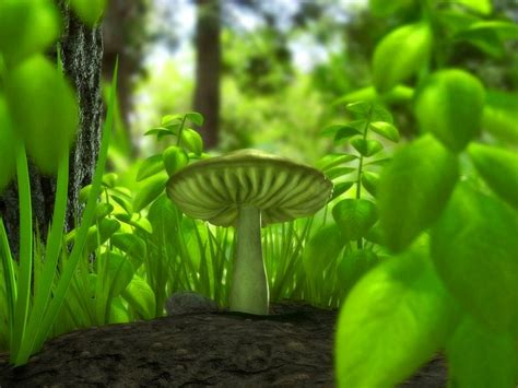 3d Green Nature Wallpaper by Wallpapers Hd Desktop Wallpapers Free 3d Wallpapers