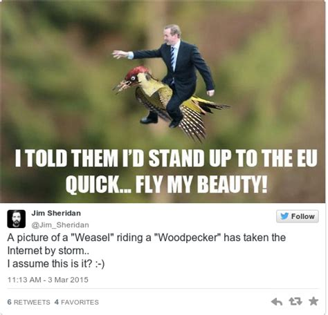 Weasel Meme - here s how the internet reached peak meme with the weaselpecker