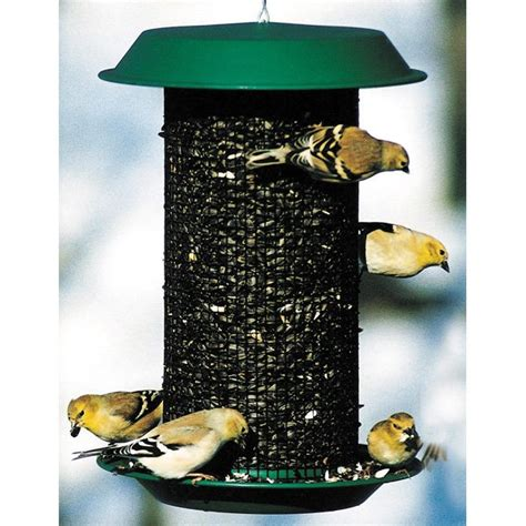 magnum sunflower seed bird feeder 8 5 dia x 12 wild