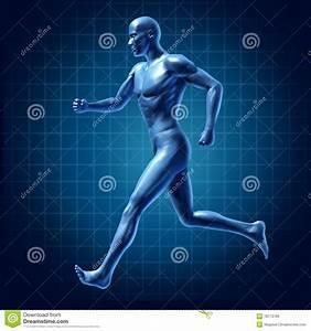 Running Man Active Runner Energy Diagram Medica Stock