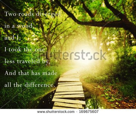 inspirational quotes forest quotesgram