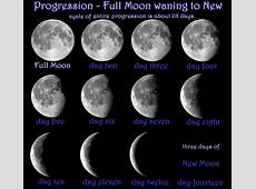 To start the day … Another SuperMoon tonight!! It Is