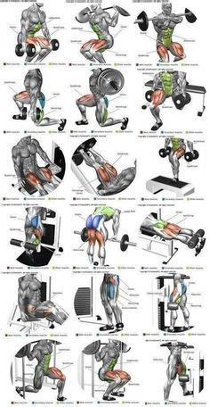 Most people build muscle with weight training, and that's certainly an easy way to do it, but it's also possible to bulk up with bodyweight workouts (aka calisthenics). All Leg Workout Names - Infoupdate.org in 2020 | Shoulder ...