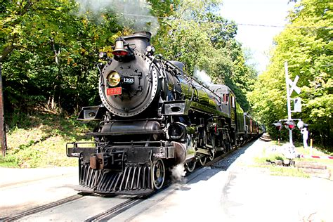 Steam Train Excursions