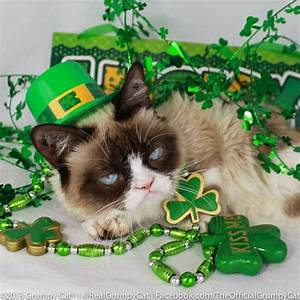 Happy St. Patrick's Day! | Grumpy Cat | Pinterest