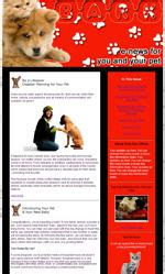 newsletter builder examples  pets vets email