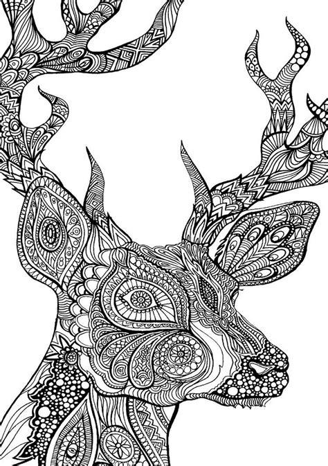 ausmalbilder erwachsene tiere reh malvorlage ausmalen wald ausmalbilder erwachsene