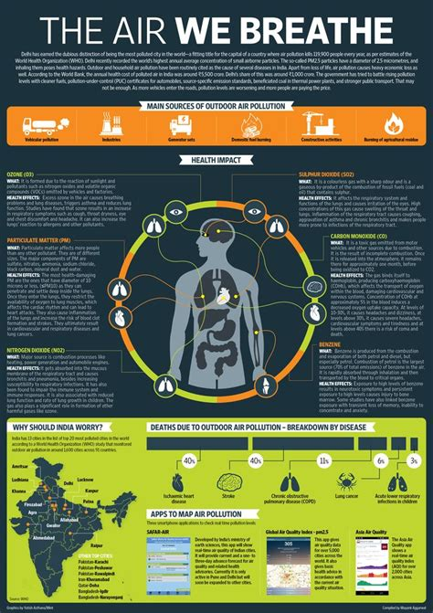 infographic  air pollution   impact  human body