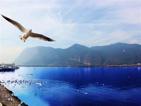Panoramio  Photo Of 昆明 滇池