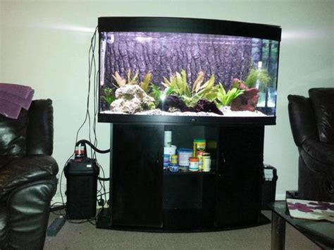 juwel vision 260 4ft bow front fish tank with cabinet setup wolverhton dudley