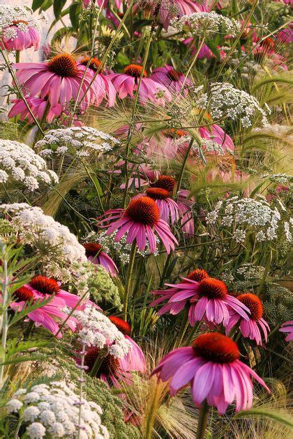 prairie gardens chaign les plus belles photos de jardin du concours igpoty c 244 t 233