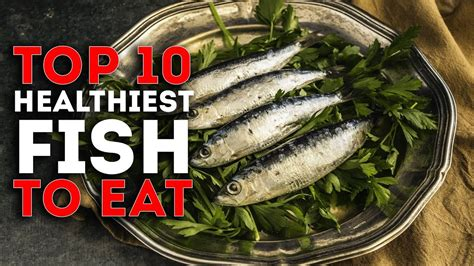 top  healthiest fish  eat youtube