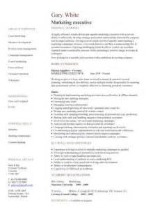 curriculum vitae format sales executive executive cv template resume professional cv executive cv