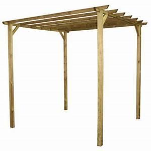 Pergola Bois En Kit Pas Cher : pergola ancolie double poteaux castorama ~ Edinachiropracticcenter.com Idées de Décoration