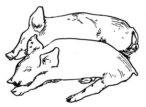 Pig Coloring Pages Coloringsuitecom