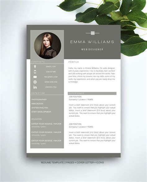 Professional Resume Brochure by Best 25 Cv Template Ideas On Creative Cv Template Creative Cv And Cv Design