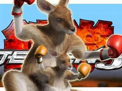 Kangaroo Tekken Boxing Animal Nixed Activists Due