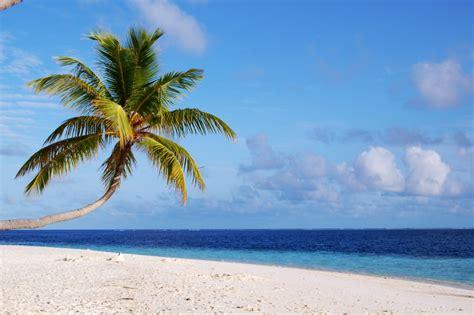 Filea Beach In Maldivesjpg  Wikimedia Commons