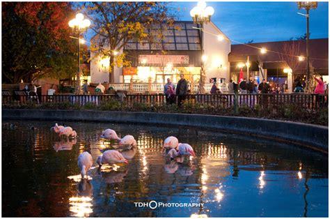 Halloween At The Rosamond Gifford Zoo In Syracuse NY | New ...