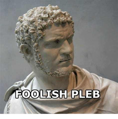 Rough Roman Memes - 25 best memes about pleb pleb memes
