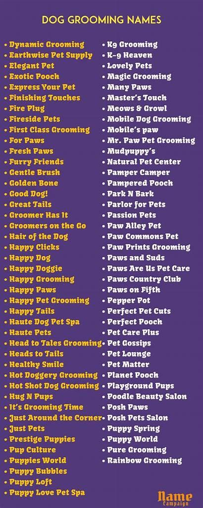 Names Grooming Dog Lists Needs Choose Many