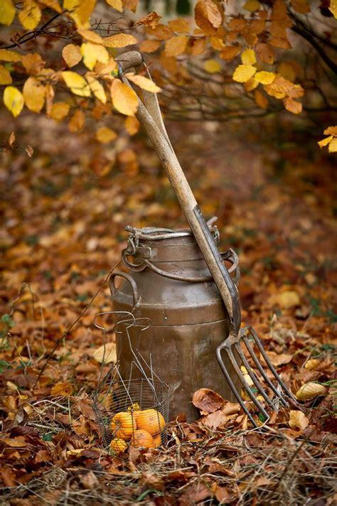 Kitchen Garden Equipments by Vintage Garden Equipment In Autumn By Brown On Getty