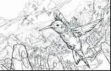 Coloring Pages Hummingbird Flower Hummingbirds Getdrawings Getcolorings Printable sketch template