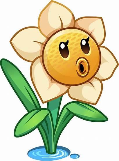 Zombies Plants Vs Pvz Narcissus Wiki Clipart