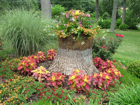 annual flower ideas annual flower bed design ideas award winning containers and seasonal flowers garden ideas