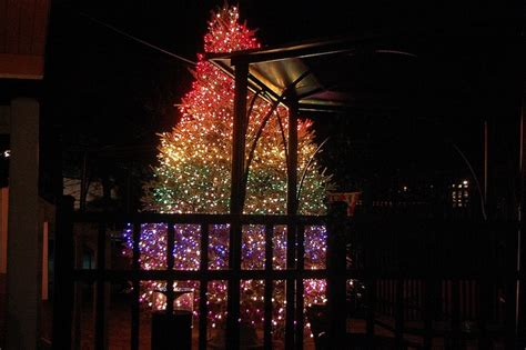 rainbow christmas tree lights season s greetings pinterest