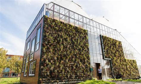 chibb house giant greenhouse  rotterdam doubles