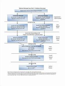Example Of Organizational Chart Medicare Managed Care Appeals Flow Chart Template Example1