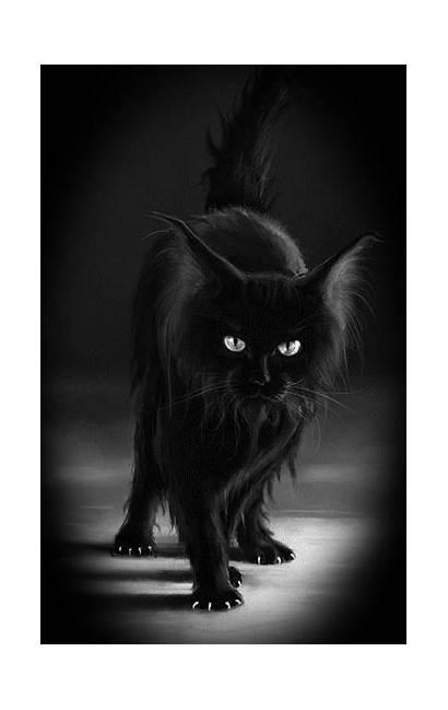 Cat Dark Goth Gifs