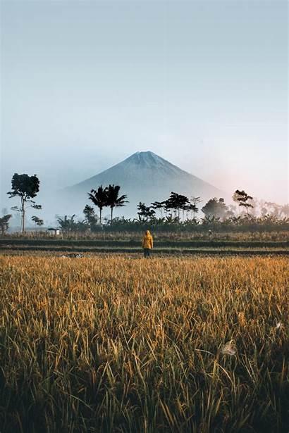 Indonesia Unsplash Pemandangan Quotes Sawah Gambar Bima
