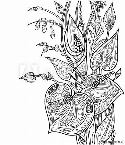Coloring Exotic Flowers Adult Bouquet Leaves Doodle