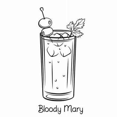 Bloody Mary Cocktail Vector Illustrations Drink Alcohol