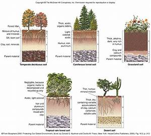 Aquatic Habitats And Terrestrial Biomes