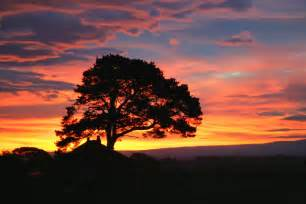 Beautiful Autumn Sunrise
