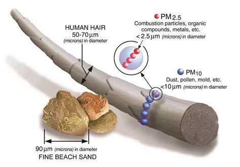 Particulate Matter (pm) Basics