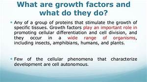 Recombinant Growth Factors