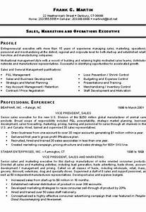 marketing sales executive resume example examples best With sample resume for marketing executive position