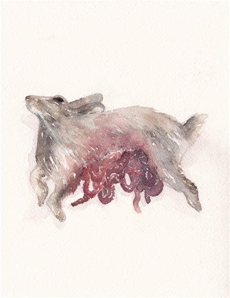 erin lux dead animals