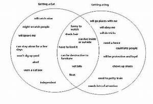 How To Brainstorm For Your Next Essay With A Venn Diagram