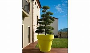 Grand Pot Ikon pour arbuste et plantes d'exception,jarre pour arbuste, pot pour plantes