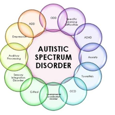Autisme en agressie